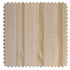 Troika / Formal Cabana Stripe - Champagne