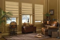 Soft Fold/Hobbled Roman Shades