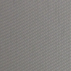 Rolex Grey